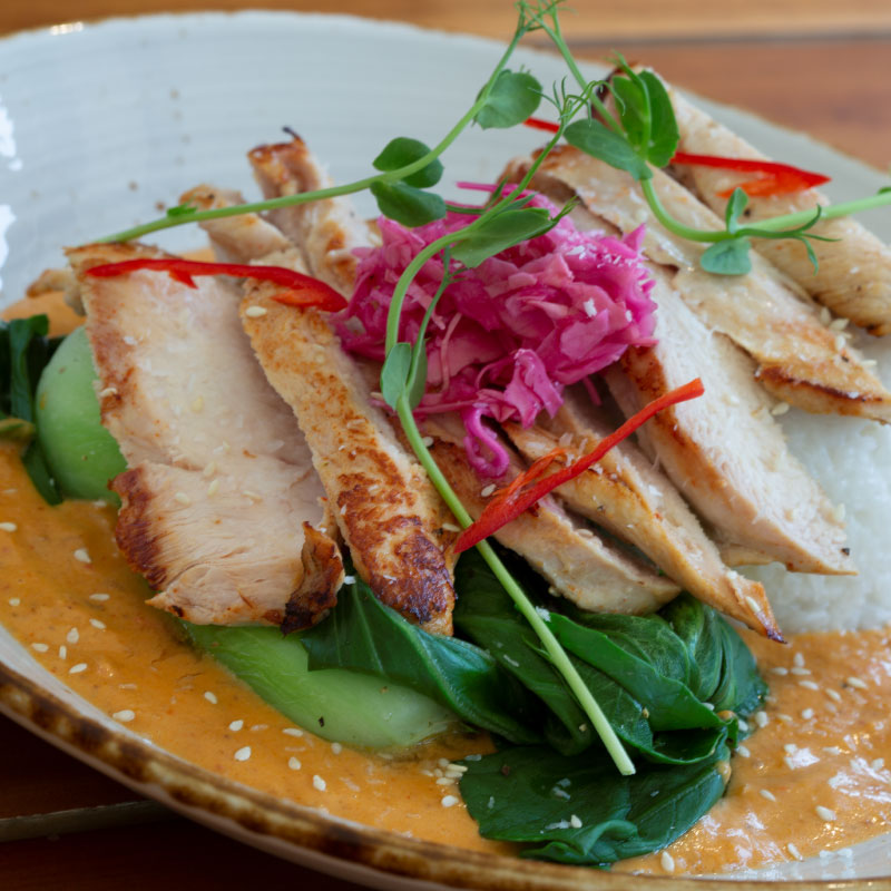 black-door-bar-restaurant-chicken-red-thai-curry